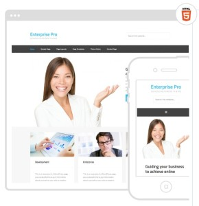 Enterprise Pro Mobile Responsive-SEO Friendly Web Site Theme