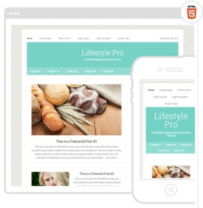 Lifestyle Pro Mobile Responsive SEO Friendly Web Site Theme