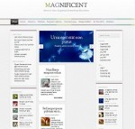 """The Magnificent"" SEO Web Site Customized Theme"